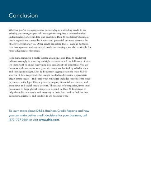 DnB - Credit Report eBook_Draft_FINAL (dragged) 2