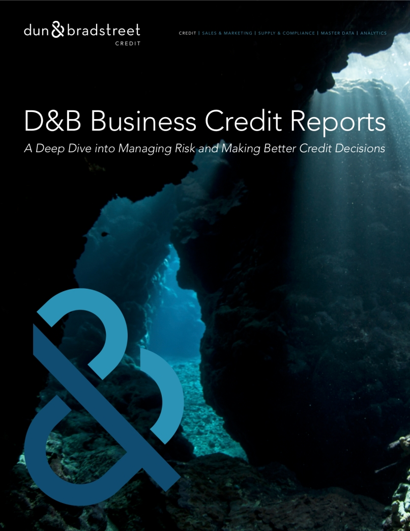 DnB - Credit Report eBook_Draft_FINAL (dragged).jpg
